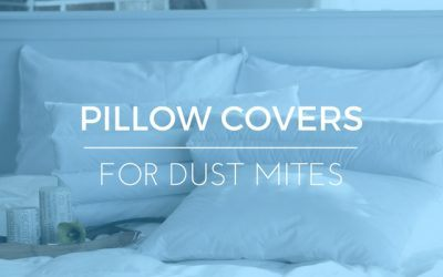 Best Pillow Covers For Dust Mites: 2017 Ratings & Reviews