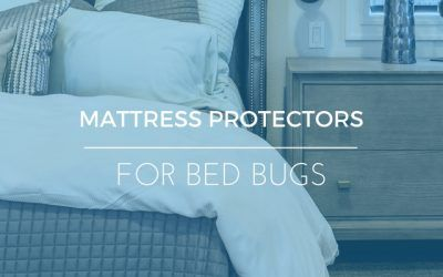 Best Bed Bug Mattress Protectors: Our Top Five With Ratings & Reviews
