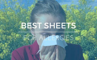 Best Sheet Sets for Allergies: Top 5 Picks in 2019 (Ratings & Reviews)