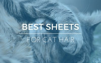 5 Best Sheets For Cat Hair: 2019 Ratings & Reviews