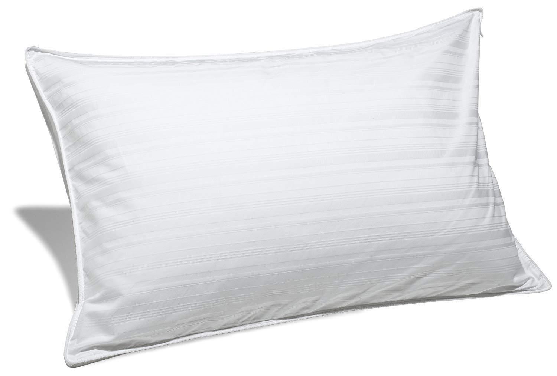 Best Pillow For Allergies Amp Asthma Best Hypoallergenic